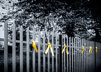 Burntwood Park 3 (Ribbons for Stephen Sutton)